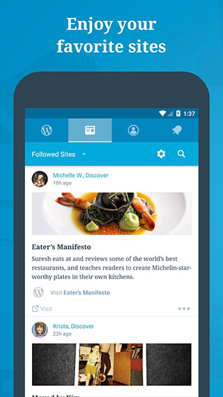 WordPress скриншот 1