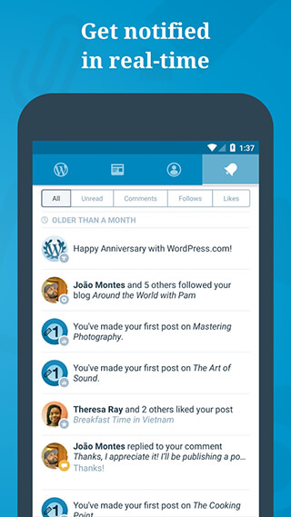 WordPress скриншот 4