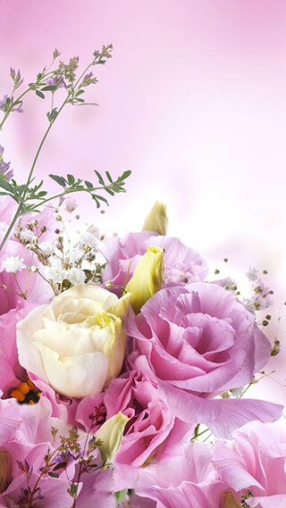 Цветы: Живые обои (Flowers Live Wallpaper)