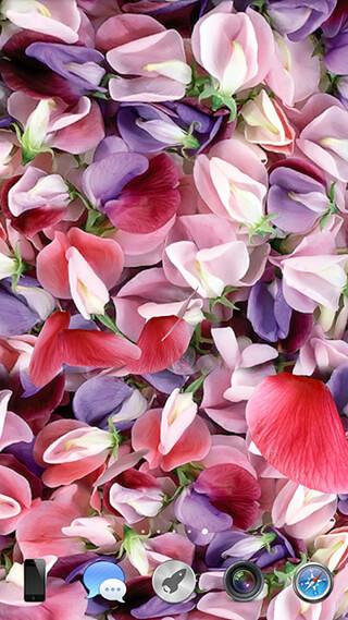 Petals 3D Live Wallpaper скриншот 3