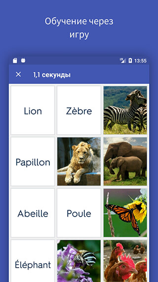 Quizlet: Learn Languages and Vocab with Flashcards скриншот 1