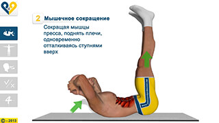 8 Minutes Abs Workout скриншот 1