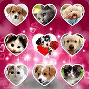 Love Photo Keypad Lockscreen иконка