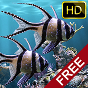 The Real Aquarium: HD иконка