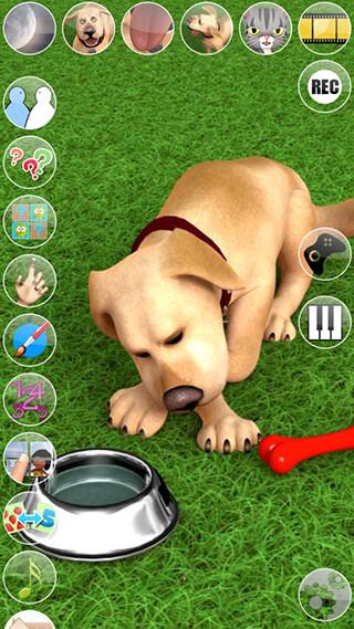 Talking John Dog: Funny Dog скриншот 4