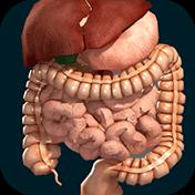 Organs 3D: Anatomy иконка