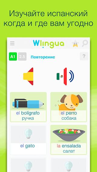 Learn Spanish: Espanol скриншот 1