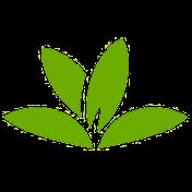 PlantNet Plant Identification иконка