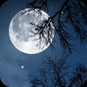Relax NightNature Sounds иконка
