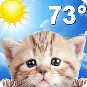 Weather Kitty иконка