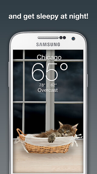 Weather Kitty скриншот 3