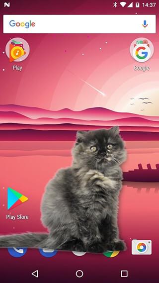 Cat Walks in Phone Cute Joke скриншот 1