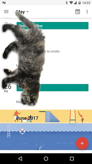 Cat Walks in Phone Cute Joke скриншот 3