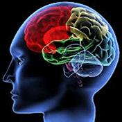 Псиxoлогические тесты иконка