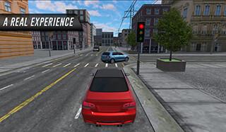 Сити Кар Драйвинг скриншот 2