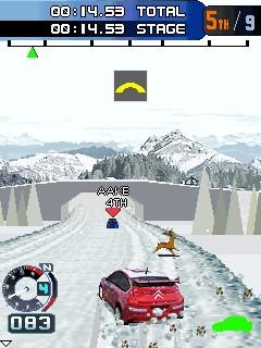 ���������������� ��������� (Pro Rally Racing)
