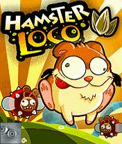 Хомяк Локо (Hamster Loco)