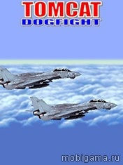Tomcat: Dogfight