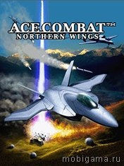 ��� �������������: �������� ������ (Ace Combat: Northern Wings)
