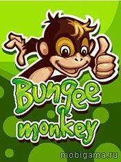 Банджи обезьянка (Bungee Monkey)