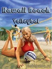Hawaii Beach Volleyball иконка