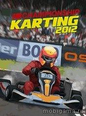 Чемпионат по картингу 2012 (Championship Karting 2012)