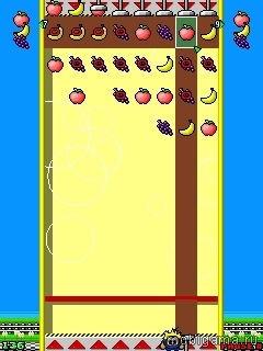 Fruit Squash