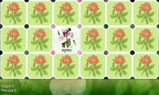 Цветочное пексесо (Flower pairs)