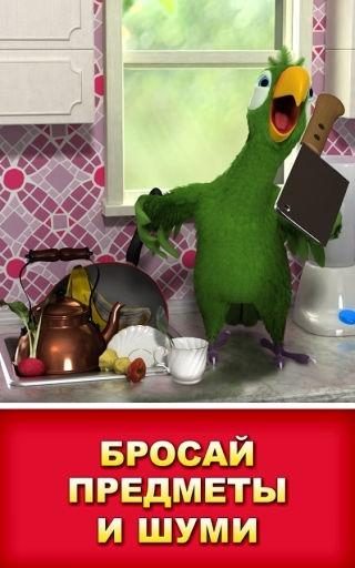 Говорящий попугай Пьер (Talking Pierre the Parrot)