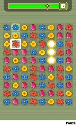 Цветочный магазин (Flower Shop Star)