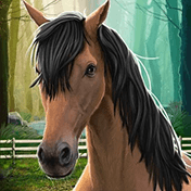 Моя лошадь (My Horse)