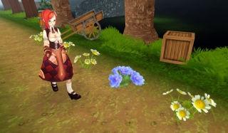Бег фермерской девушки (Farmer Girl Runner)
